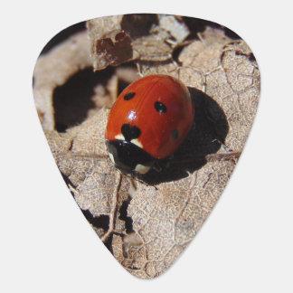 Ladybug Guitar Pick
