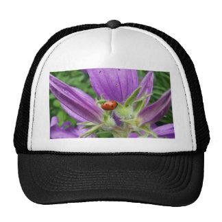 Ladybug Trucker Hats