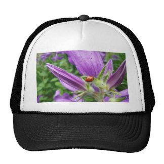 Ladybug Trucker Hat