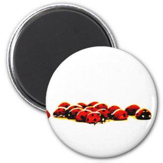 ladybug invasion 6 cm round magnet