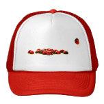 ladybug invasion hat