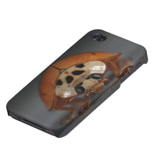 Ladybug iPhone 4 Cases