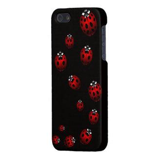 Ladybug iPhone 5 Case Lady Bird iPhone Gifts