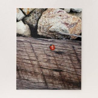 Ladybug Jigsaw Puzzle