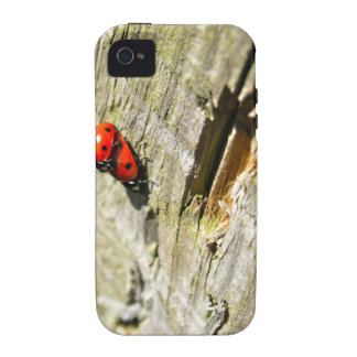 Ladybug/Ladybird iPhone 4/4S Case-Mate Tough Vibe iPhone 4 Cases
