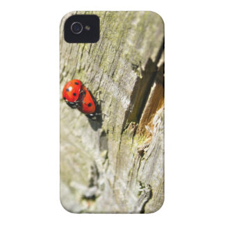 Ladybug/Ladybird iPhone 4 Case-Mate Barely There iPhone 4 Cases