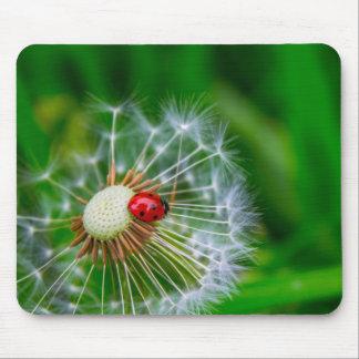 LadyBug Mouse Mat Mousepad