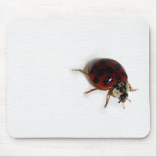 Ladybug Mouse Mats