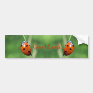 Ladybug on a blade of grass  Bumper Stickers