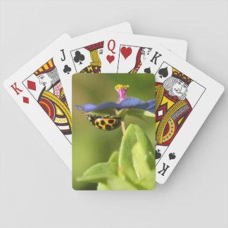 Ladybug on blue wild flower playing cards