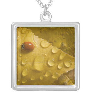 Ladybug on fall-colored leaf. Credit as: Don Silver Plated Necklace