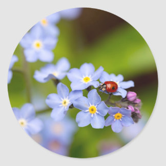 Ladybug on Forget-me-not Stickers