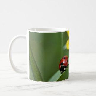 Ladybug on Grass close up Coffee Mugs