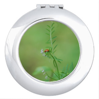 Ladybug on Green Compact Mirror