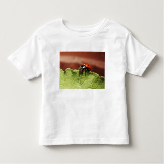 Ladybug on lettuce leaf (MR) Toddler T-Shirt