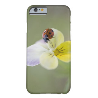 Ladybug on pansy, Biei, Hokkaido, Japan Barely There iPhone 6 Case