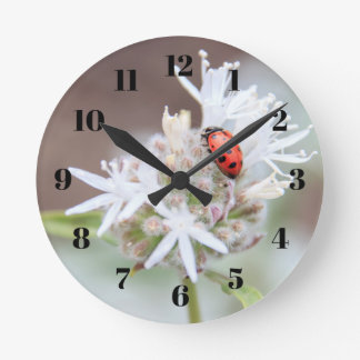 Ladybug on Silverleaf Phacelia Flowers Wall Clock