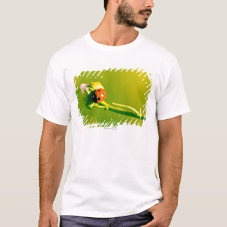 Ladybug on sprig T-Shirt