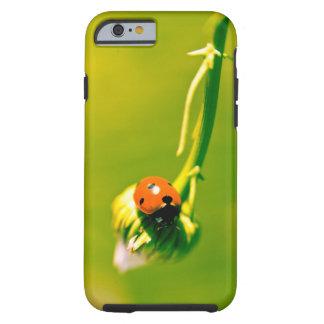 Ladybug on sprig tough iPhone 6 case