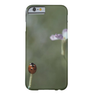 Ladybug on Stem Barely There iPhone 6 Case