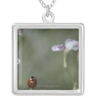 Ladybug on Stem Silver Plated Necklace