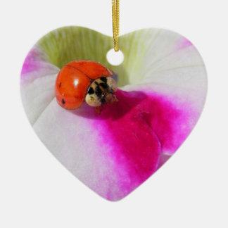 Ladybug on the petunia - ornament