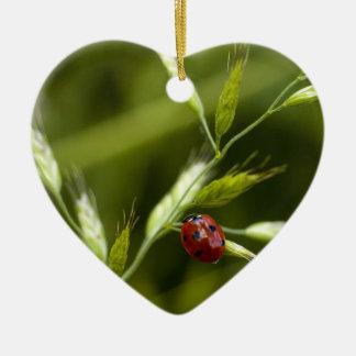 Ladybug on Wild Grass Ceramic Heart Decoration