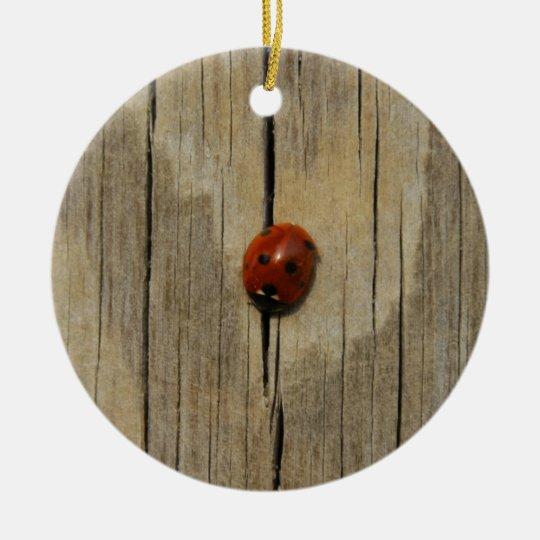 Ladybug on wood round ceramic decoration