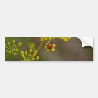 Ladybug on yellow flower bumper stickers