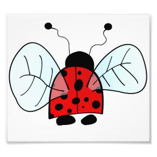 Ladybug Art Photo