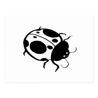 Ladybug  - postcard