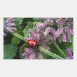 Ladybug Rectangular Sticker
