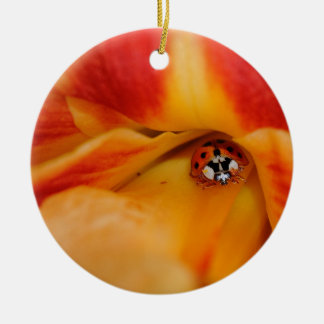 Ladybug Round Ceramic Decoration