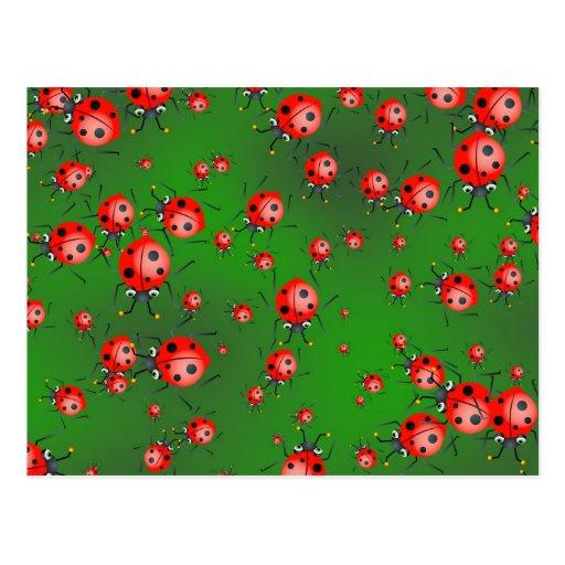 Ladybug Wallpaper Postcard