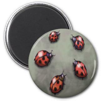 Ladybugs 6 Cm Round Magnet