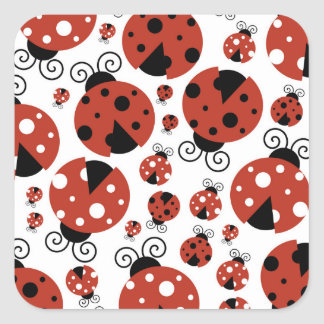 Ladybugs (Ladybirds, Lady Beetles) - Red Black Square Sticker