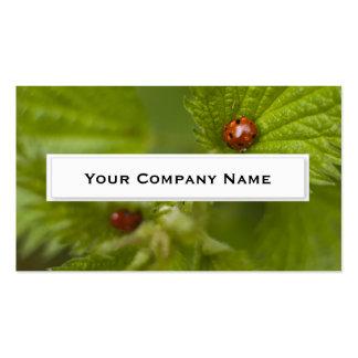 Ladybugs on Green leaf Business Cards