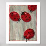 Ladybugs! Posters
