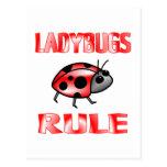 LADYBUGS RULE