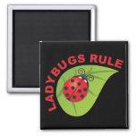 Ladybugs Rule Square Magnet