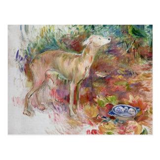 Laerte the Greyhound, 1894 Postcard