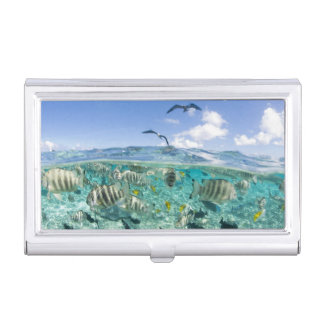 Lagoon safari trip featuring Stingrays Business Card Holder