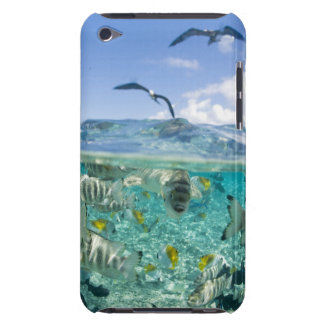 Lagoon safari trip featuring Stingrays iPod Touch Covers