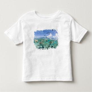 Lagoon safari trip featuring Stingrays T-shirts