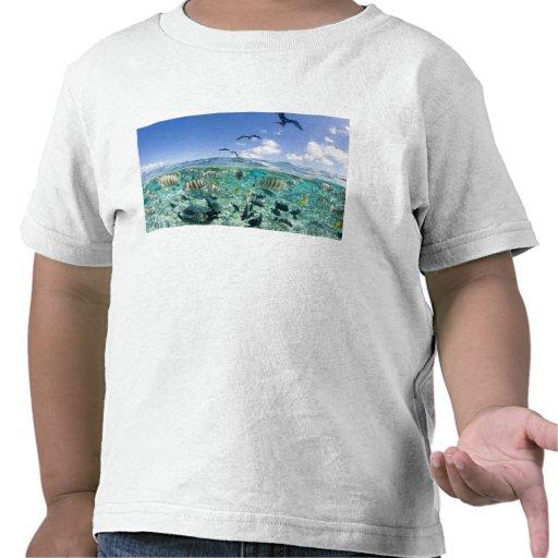 Lagoon safari trip featuring Stingrays Tshirt