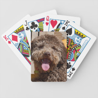 Lagotto Romagnolo Lying On A Wooden Bench Poker Deck