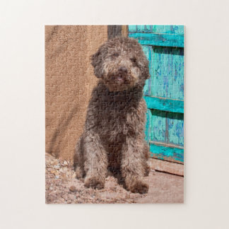 Lagotto Romagnolo Waiting By A Blue Door Jigsaw Puzzle