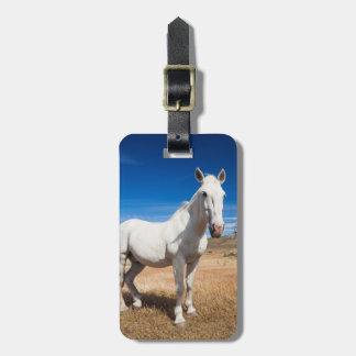 Laguna Azul, landscape with horses Luggage Tag