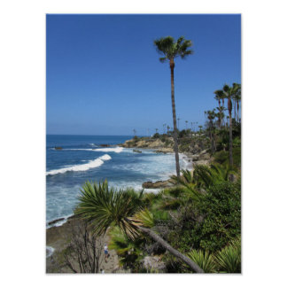 Laguna Beach - palmtrees and sand Poster