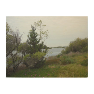 Laguna Lake, San Luis Obispo, Full, Wood Wall Art Wood Canvas